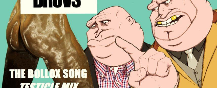 THE BOLLOX SONG